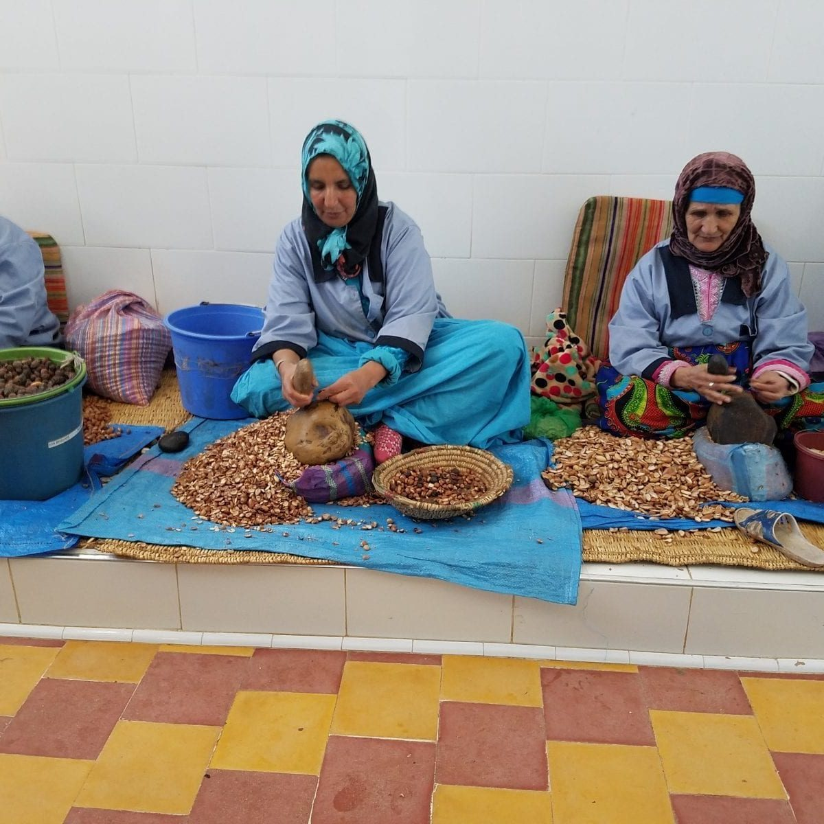 Crushing Argan tree nuts